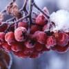 Синоптики обещают Татарстану холодную зиму