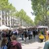 Барселона – столица барсе…точников