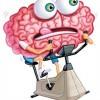 Как и чем  «накачать» мозг?