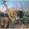 Татарстан уберегут от конца света