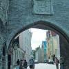 Главная в Эстонии профессия – это эстонец