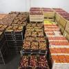 Татарстанцев просят сообщать о санкционных продуктах