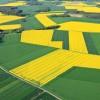 «Агрополис» — новое слово в производстве отечественной сельхозтехники