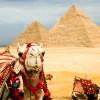 ТОП-4 лучших отелей Египта: лето-2016