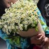 Flowwow.com: удобное и выгодное приобретение цветов