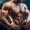 Нандролон — один из самых эффективных препаратов в тяжелой атлетике