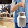 Татарстан ищет возможность спасти молочную отрасль