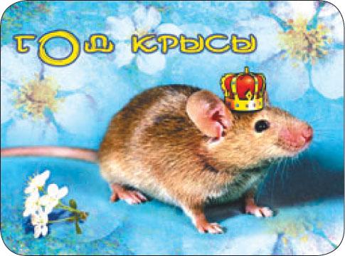 Поздравления 2008 год крысы